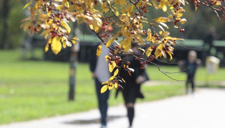 jesen_sarajevo_vrijeme_setnja_lijepo_sunce_prognoza_boje_lisce_rsa7