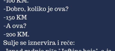 VICEVI